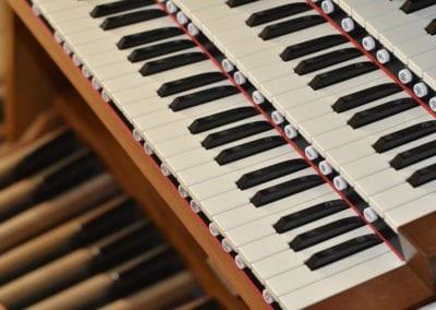 OrganKeyboards